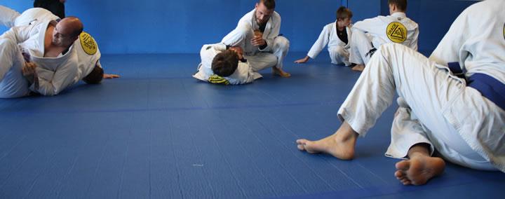 adults jiu jitsu classes gracie
